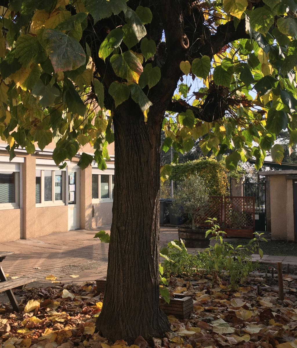 Rénovation de deux foyers d'hébergement de femmes Montée de Choulans